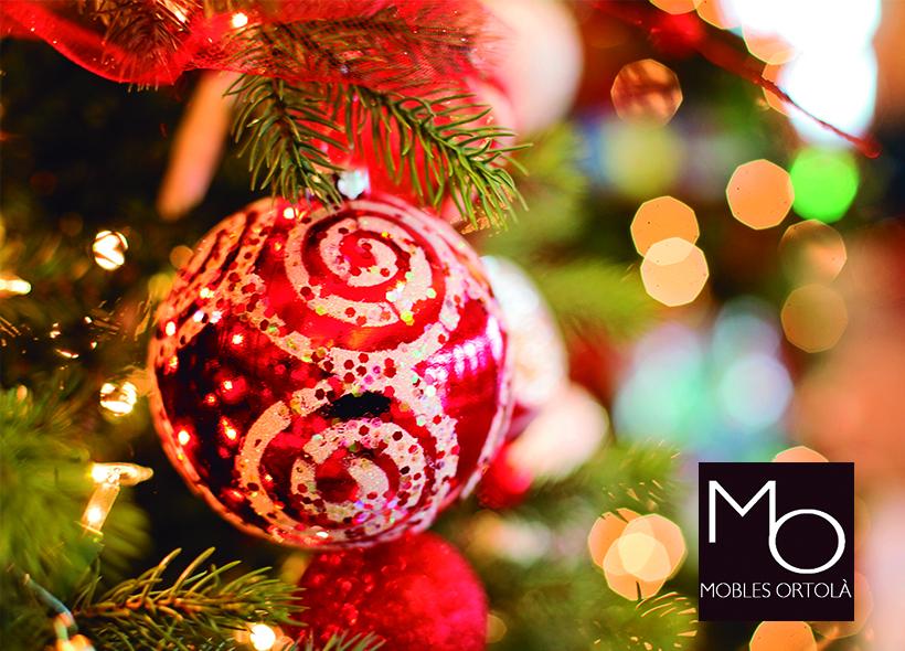 Momentos inolvidables en Navidad